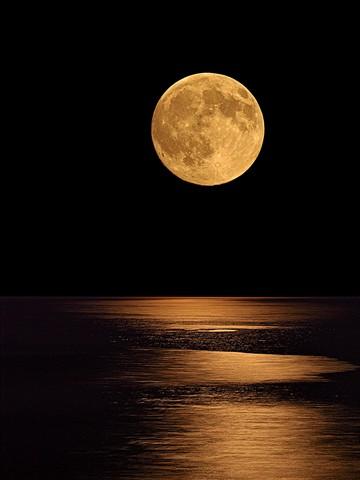 Summer Moon Rising