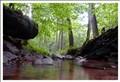 The Obrunn creek