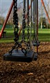 Rookery Park Swings