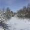 Winter_Pathway