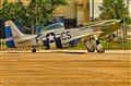"P51 Mustang Trainer ""Galveston Gal"""