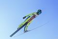 Ski jumps championship