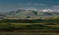 green desert ...