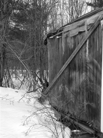 Old Shed in Winter
