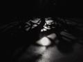 shadowlines