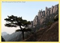 Mount Sanqingshan National Park, Jiangxi