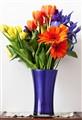 Blue Vase2