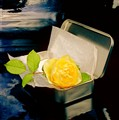 Rose in a metal box