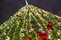 KLCC Christmas Tree