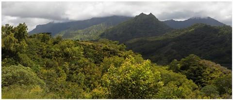 Kauai Hills Panorama 41
