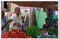 Veggie Vendor