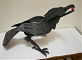 Arvin's Raven