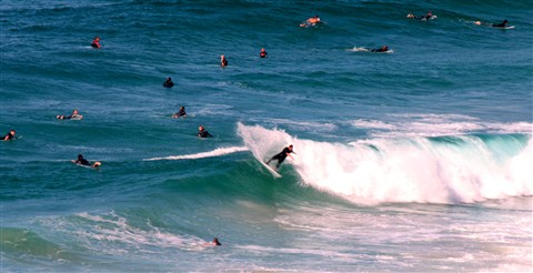 Busy Surf