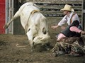 Bullrider escape