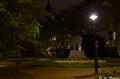 London - Night Garden