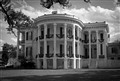 Nottoway Plantation White Castle, Louisiana