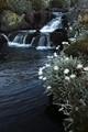 Big River cascades 16