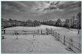B&W snow 72b