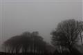 Dartmoor Mist, Devon