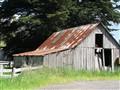 A century old; Tasmania