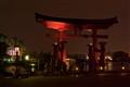 Japan Arch Night 2