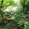 Butchart_Gardens-1-00771