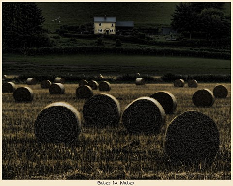 Bales in Wales