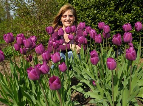 4478_karen_tulips_best