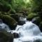 20180825 Kaimai Range Wairere Falls Walk 22 REX