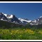 Summer At Glacier Nat'l Park