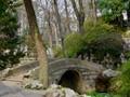Bridge to Serenity