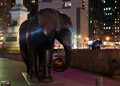 Columbus Circle Elephants