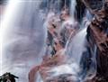 Sheldon Falls, Minnewaska State Park,NY,USA