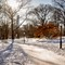 NY-Snow-3