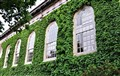 Ivy at Harvard University