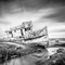 point_reyes-shipwreck-bw
