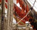 dry nets