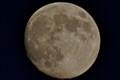 Allegany Moon