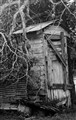 BW  Outhouse
