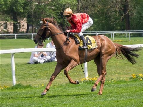 horserace0
