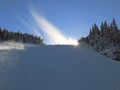 I was crossing lower down the Gagnon trail (At Tremblant ski resort) just in time to see this plume cloud and sun at the top. Lucky timing.