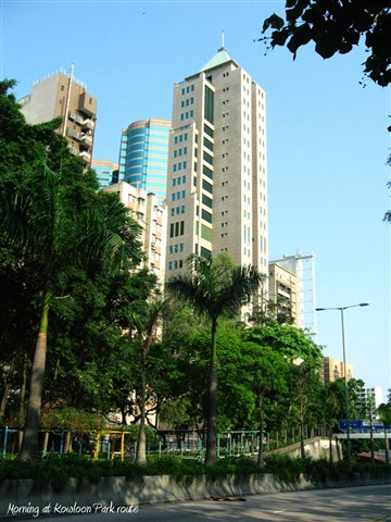 Kowloon park rd morning