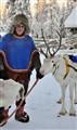 sami people and reindeer herding