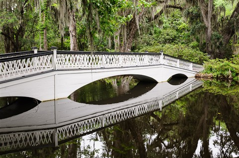 Bridge Reflection