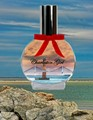 Perfume bottle bridge see thru bridge lighthouse a1