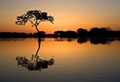 sunrise in Louisiana