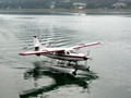 A Double Dose of Seaplanes