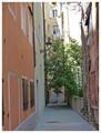 Trieste, Cavana