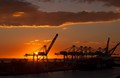 Cranes in Long Beach