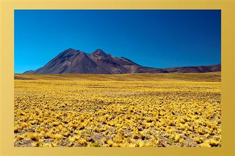 16 - Atacama